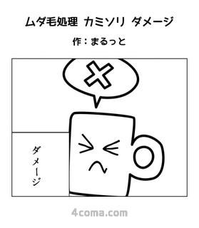 ムダ毛処理 カミソリ ダメージ.jpg